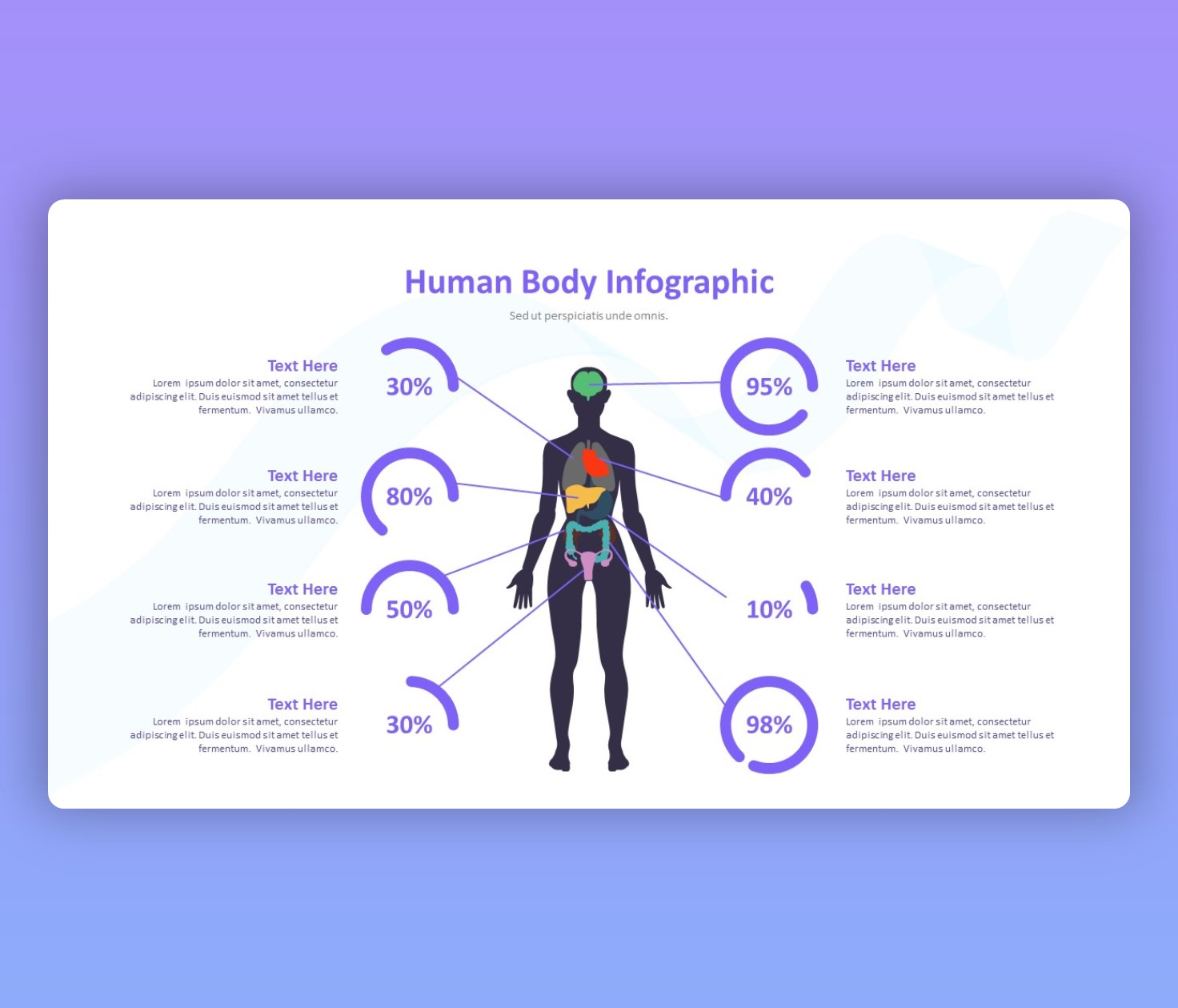 Human Body Infographic
