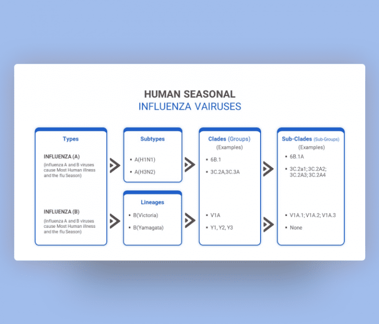 Seasonal Influenza Family PowerPoint Template