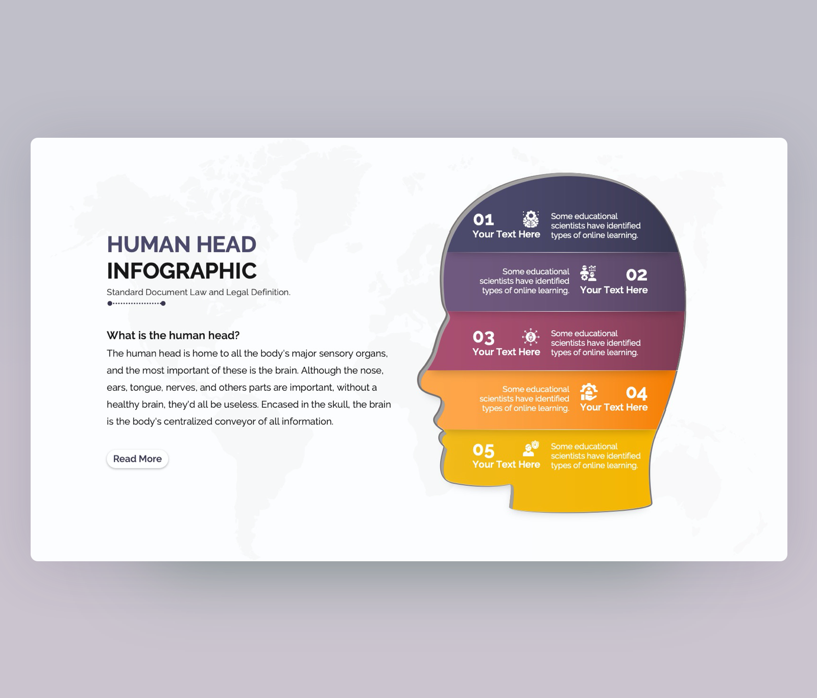 Human head infographic for PowerPoint